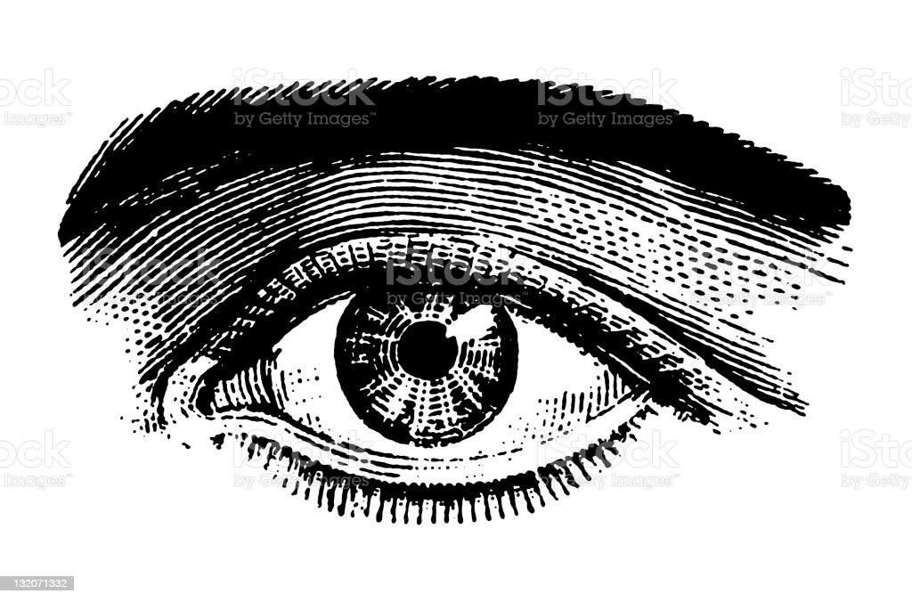 close up of Eye royalty-free close up of eye stock vector art & more images of anatomy