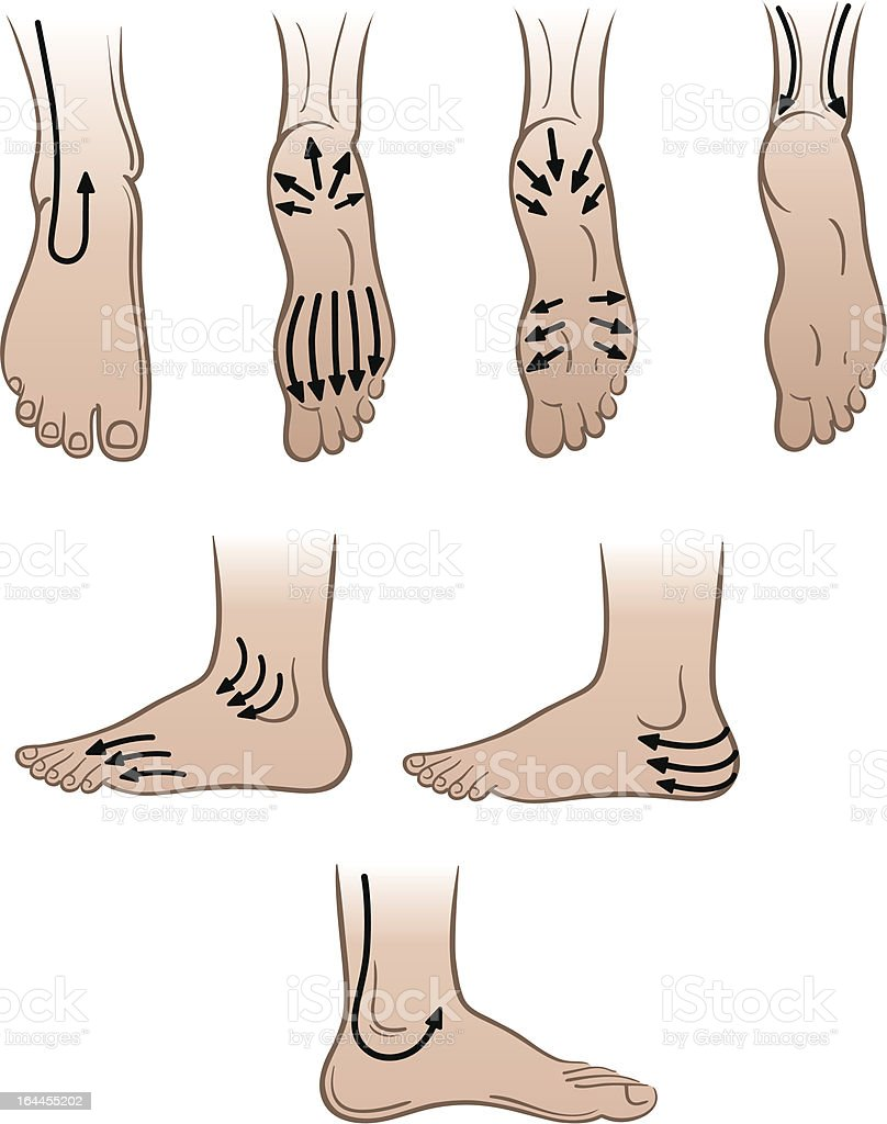 Closeup man feet with massaging lines (vector illustration) royalty-free stock vector art