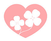 Clover in the heart