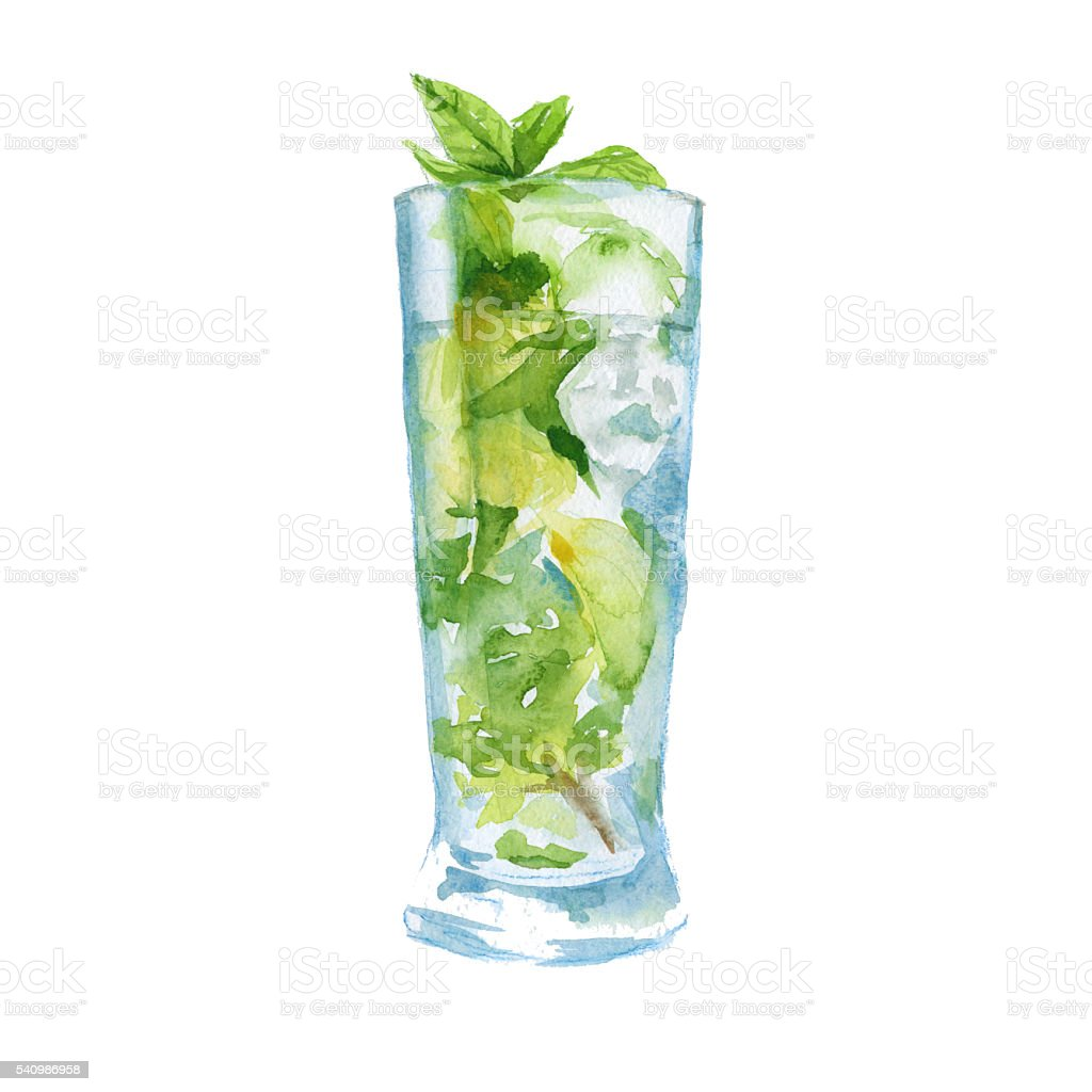 cocktail with fruit and mint. isolated. watercolor illustration vector art illustration