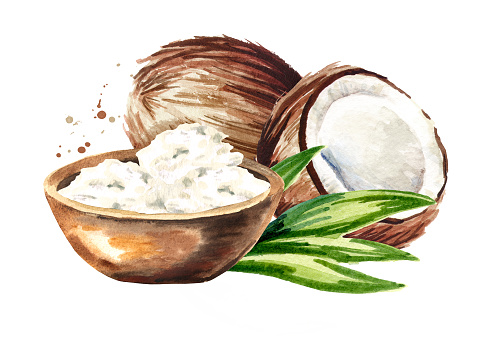 Coconut butter on wooden background and nuts. Watercolor  hand drawn illustration  isolated on white background