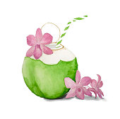 istock Coconut juice drinking from green fruit palm tree plant and pink orchid flower, illustration watercolor hand drawing isolated on white background and clipping path 1315975656