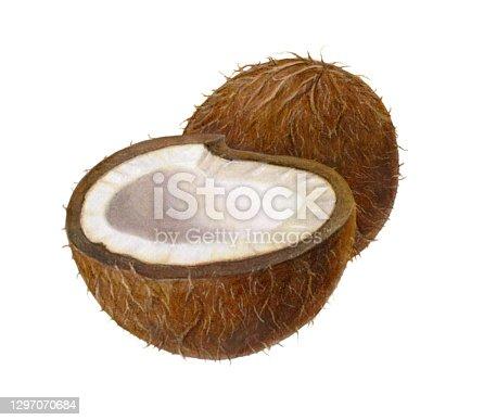 istock Coconut Pair 1297070684