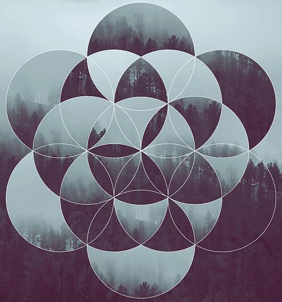 Collage con el bosque y flor de la vida - ilustración de arte vectorial