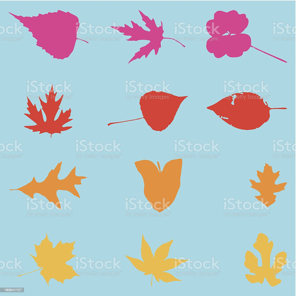 Collection 12 leaves vector art illustration