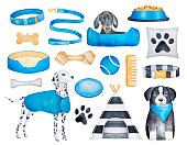 Collection of different dog breeds (dachshund, dalmatian, border collie) and doggy objects. Must have things what to buy for new puppy.