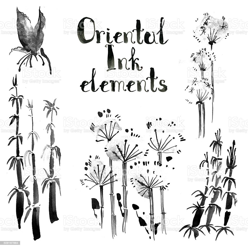 Collection of oriental ink elements: bamboo and dandelion. Sumi- vector art illustration