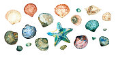 Collection of seashells in style doodle and abstract hand-painted with watercolors isolated on white background.