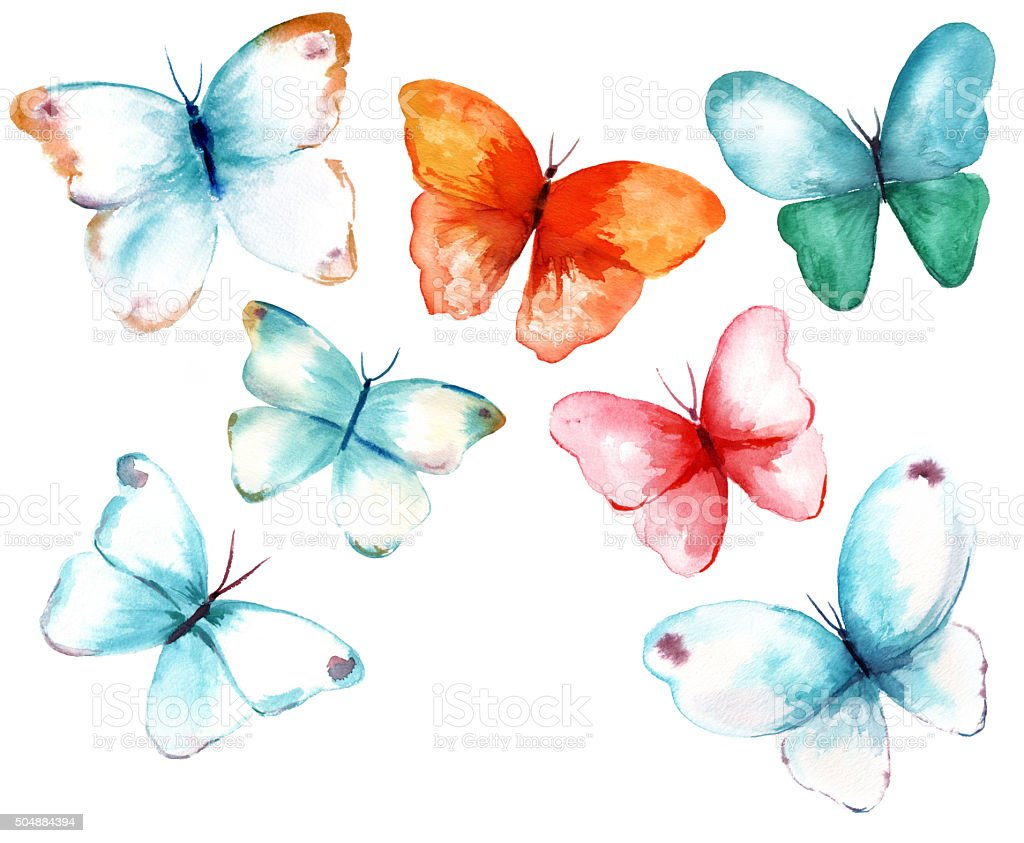 Collection Of Watercolor Butterflies On White Background ...
