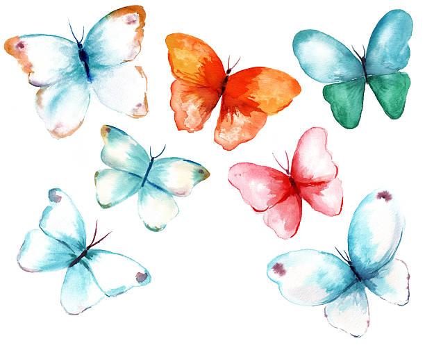 Coleção de borboletas em aquarela sobre fundo branco - ilustração de arte em vetor