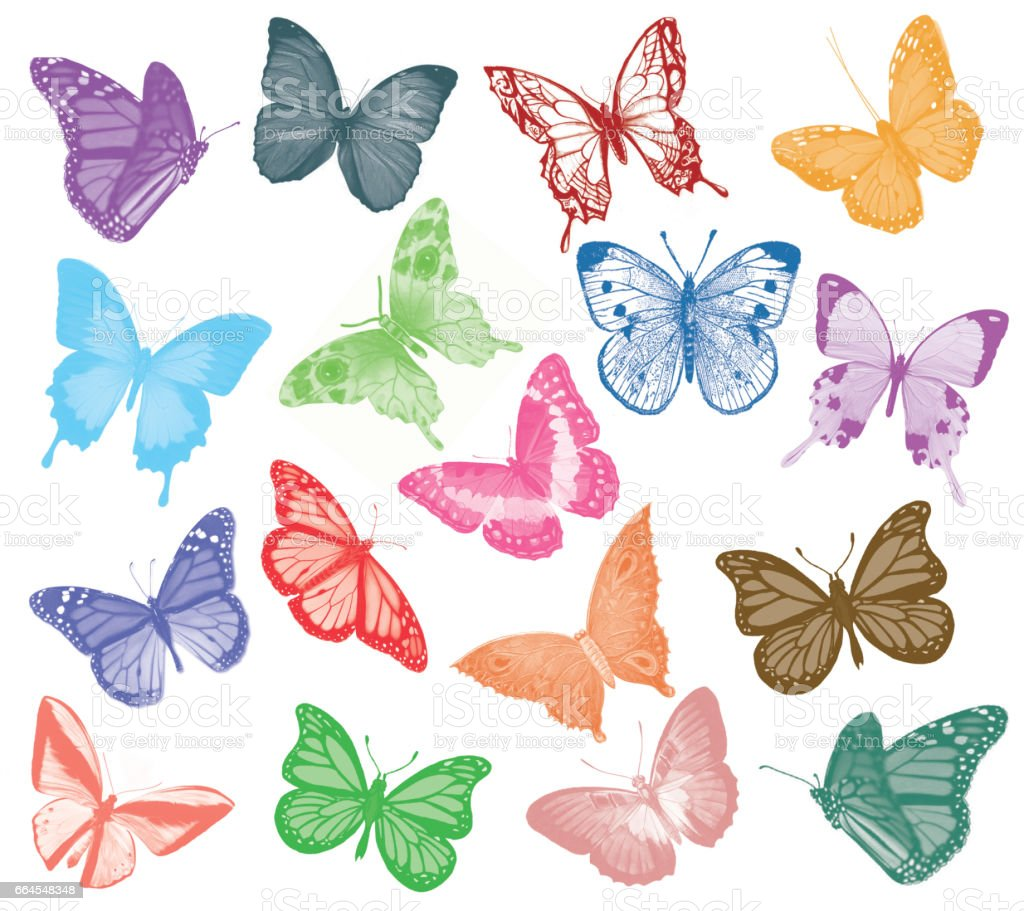 Collection of watercolor butterflies on white background - Illustration royalty-free collection of watercolor butterflies on white background illustration stock vector art & more images of abstract