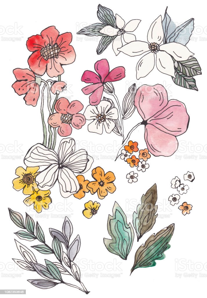 A Collection Of Watercolors And Drawings Of Flowers Floral Arrangements And Bouquets Stock Illustration Download Image Now Istock