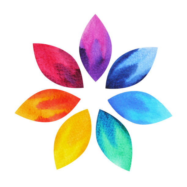 7 color of chakra sign symbol, colorful lotus flower icon, watercolor painting hand drawn, illustration design 7 color of chakra sign symbol, colorful lotus flower icon, watercolor painting hand drawn, illustration design flower head stock illustrations