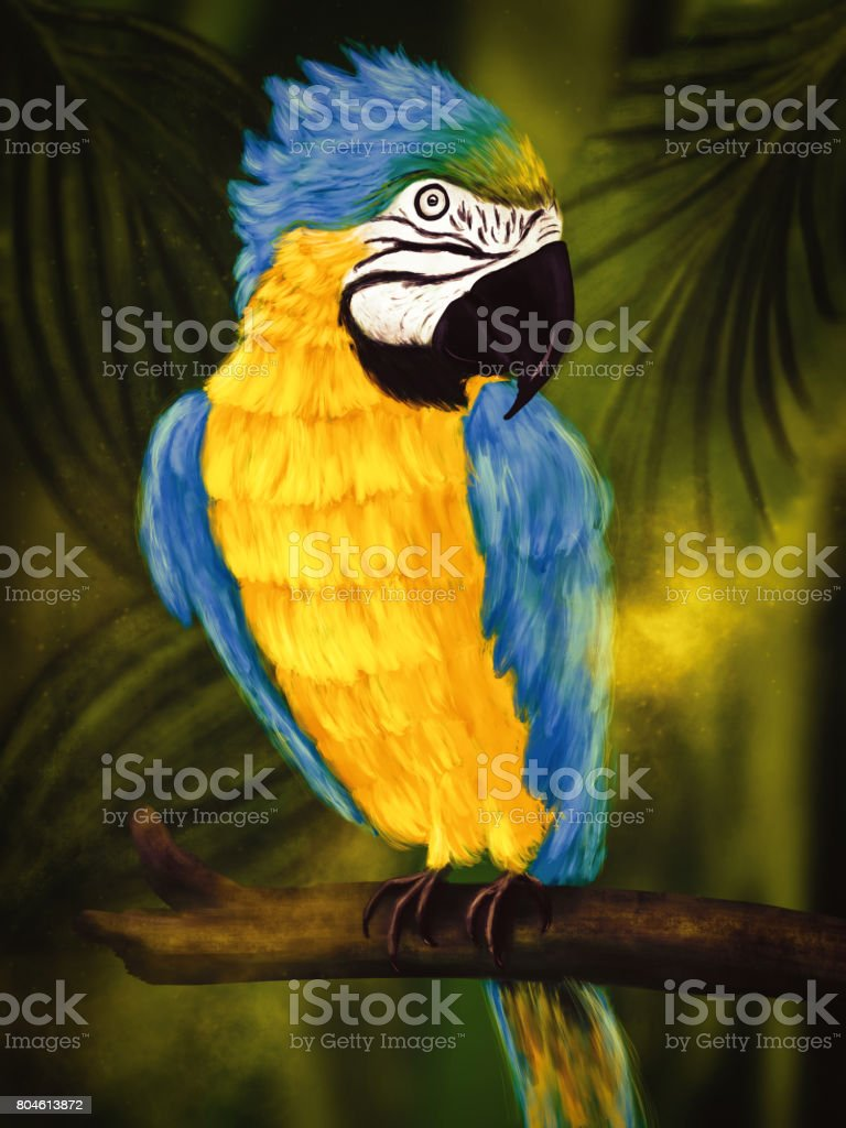 Colorful Ara sitting on an old branch in a jungle, digital painting vector art illustration