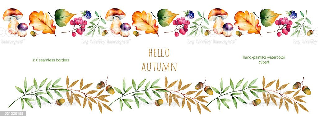 Colorful Autumn Seamless Border With Leavesflowersbranchberries Royalty Free