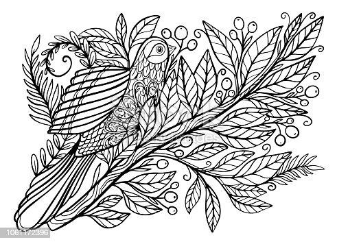 ᐈ Imagen De Dibujos Para Colorear Libro Para Colorear Para