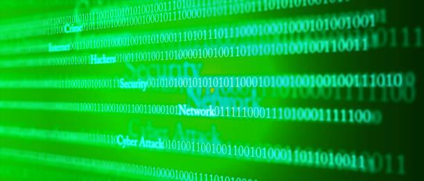 電腦駭客概念向量藝術插圖