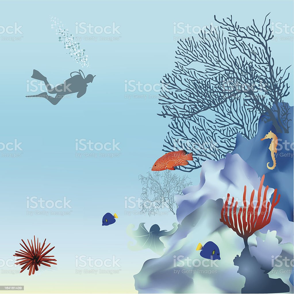 Coral reef - 2 vector art illustration