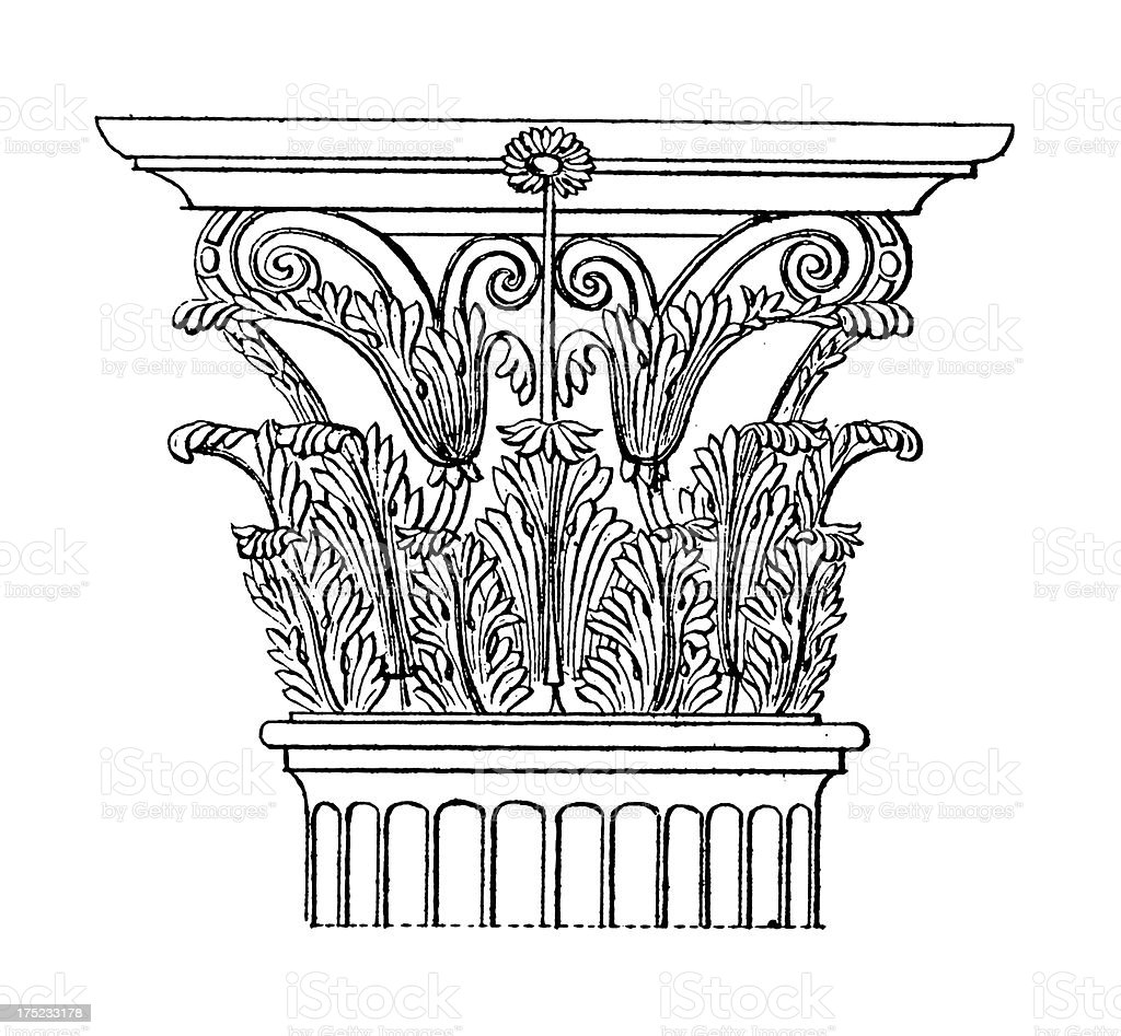 Corinthian Capital | Antique Architectural Illustrations vector art illustration