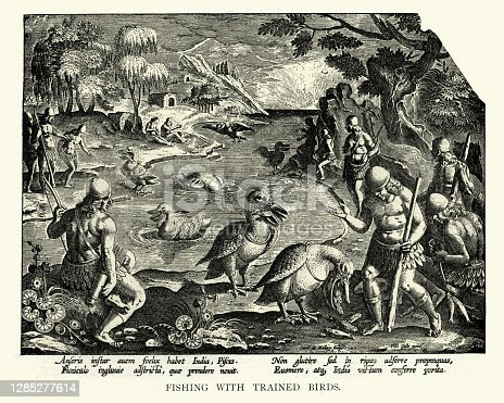 istock Cormorant fishing, fishermen using trained birds to catch fish, 16th Century 1285277614