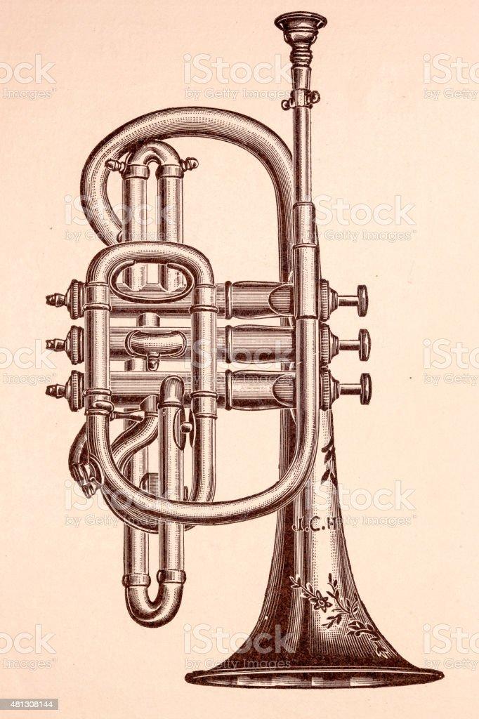 Cornet music instruments vector art illustration