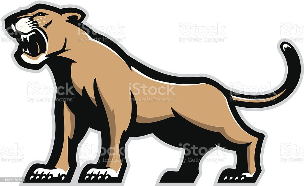 royalty free mountain lion clip art vector images illustrations rh istockphoto com  mountain lion clip art free