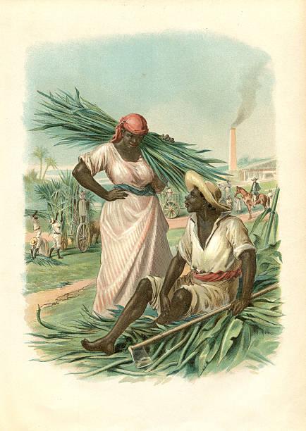 Couple of cuban slaves harvesting sugar cane 1880 vector art illustration