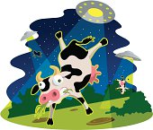 Cow abduction.