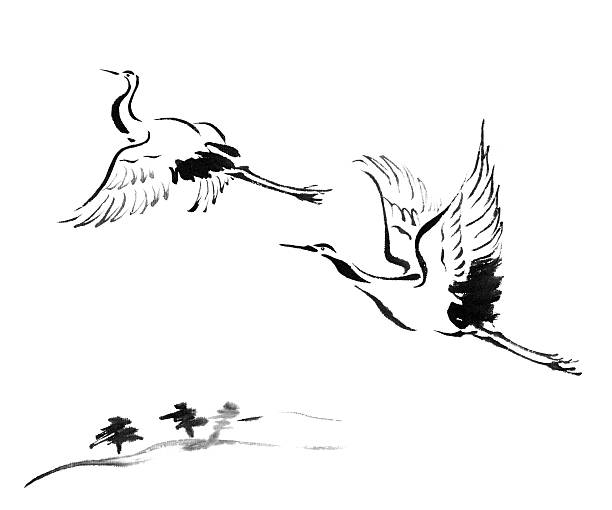 cranes - crane bird stock illustrations