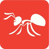 Creative Ant Icon