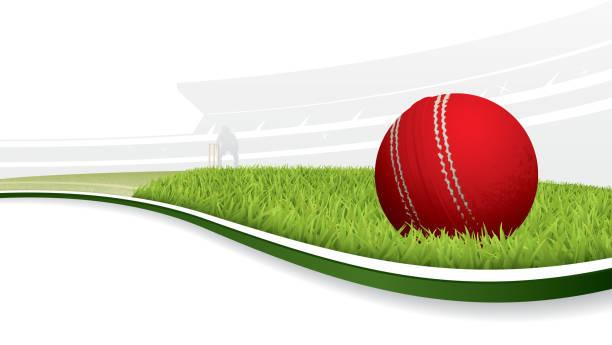 ilustraciones, imágenes clip art, dibujos animados e iconos de stock de fondo de críquet - críquet
