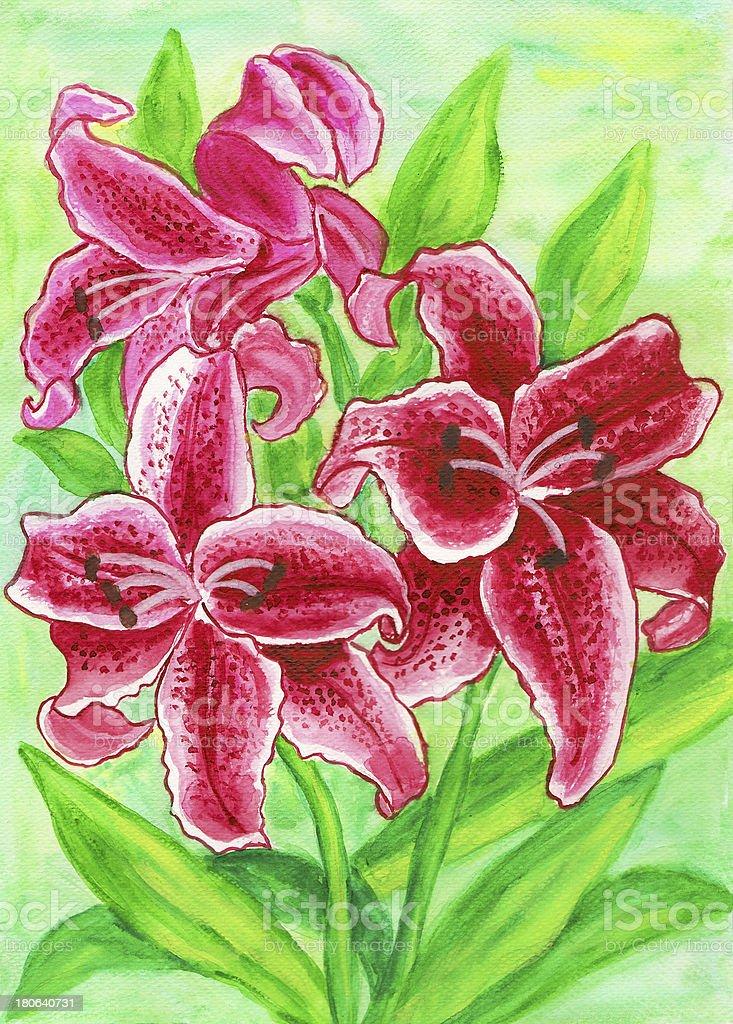 Crimson lilies royalty-free crimson lilies stock vector art & more images of art
