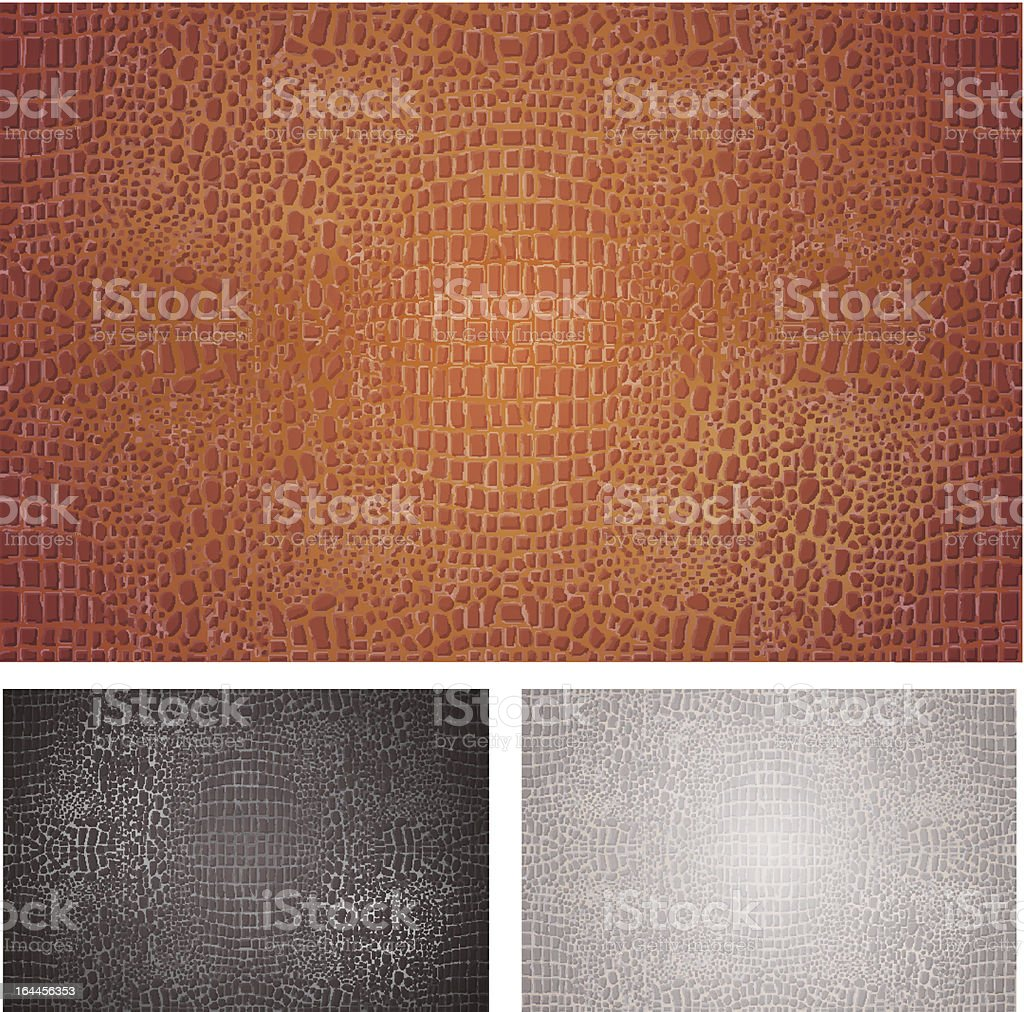 Crocodile Leather Textures Set royalty-free crocodile leather textures set stock vector art & more images of abstract
