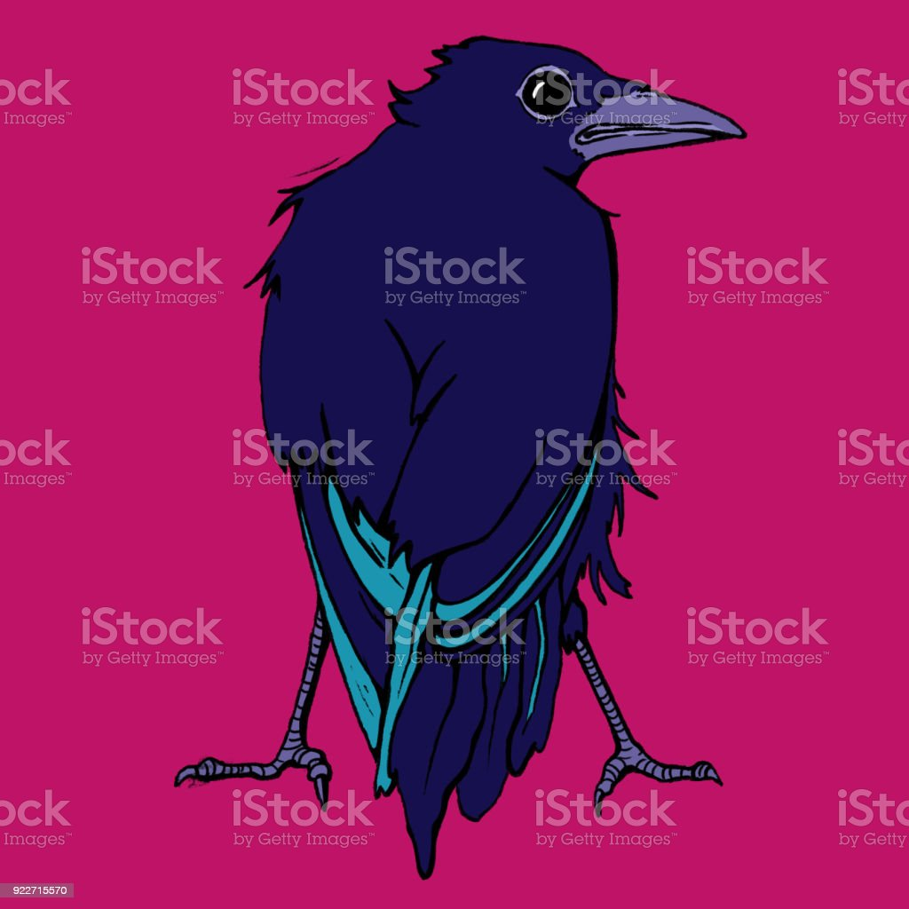 Crow from Behind vector art illustration