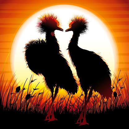 Coronilla Cranes siluetas de safari en la puesta de sol