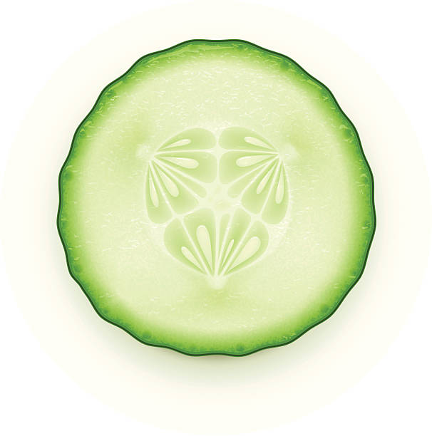 Royalty Free Cucumber Clip Art, Vector Images ...