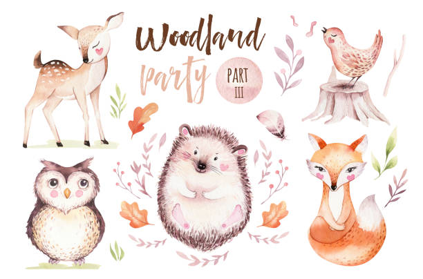 ilustrações de stock, clip art, desenhos animados e ícones de cute baby fox, deer animal nursery bird and bear isolated illustration for children. watercolor boho forest drawing, watercolour, hedgehog image nursery posters - cão selvagem