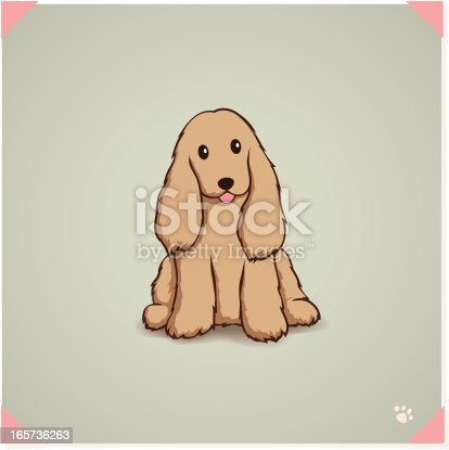 istock Cute Cocker Spaniel 165736263