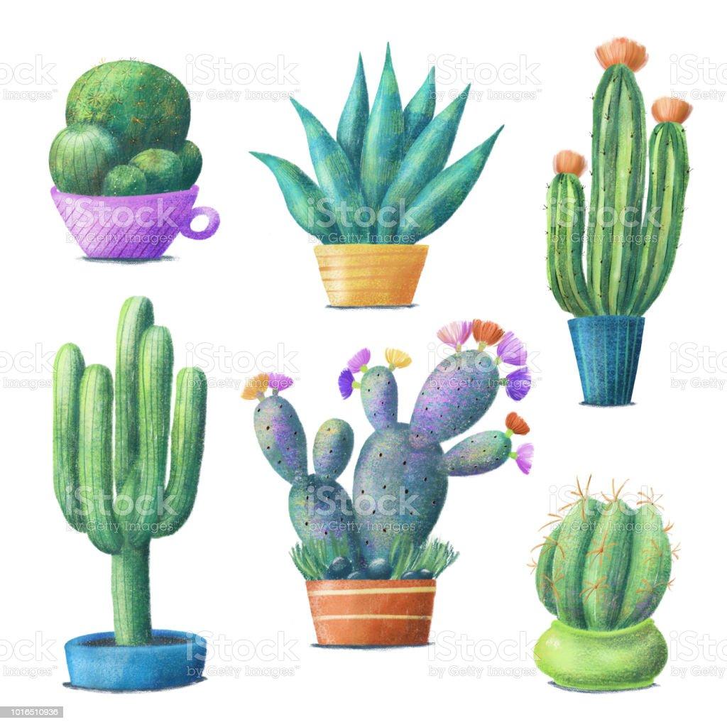 Cute Colorful Cactus Set Houseplants In Pots Stock Vector Art More
