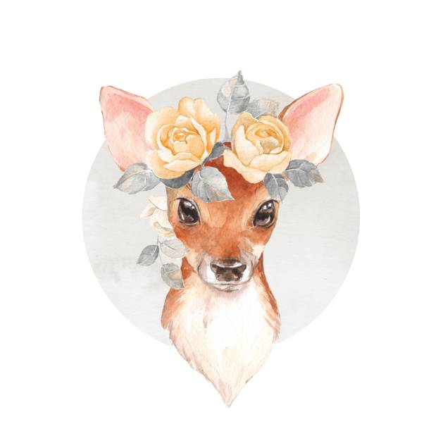 cute fawn. watercolor illustration - baby animals stock illustrations