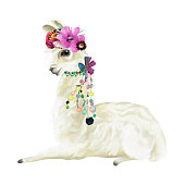Cute hand painted mexican llama, alpaca with flowers wreath, floral bouquet and boho feathers decoration