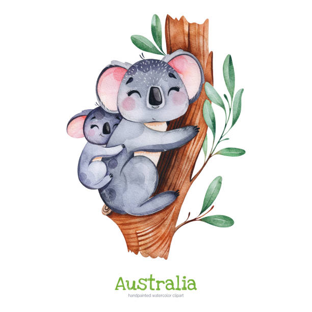 cute koala with baby on eucalyptus tree - koala stock illustrations