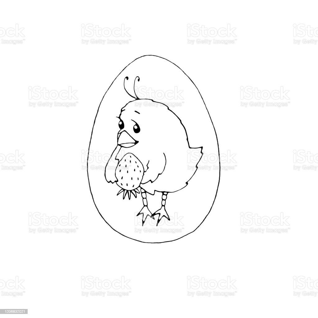 Doodle Tarzinda Sevimli Kucuk Tavuk Paskalya Hayvan Ciftlik Yaz Ve