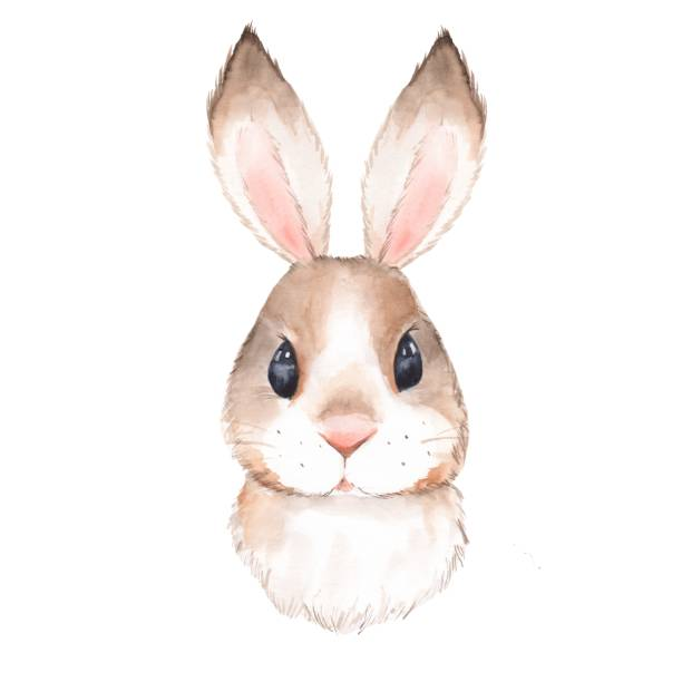 cute rabbit 2 - baby animals stock illustrations