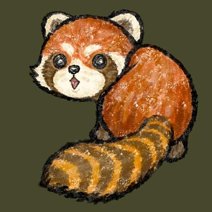 Cute red panda looking back