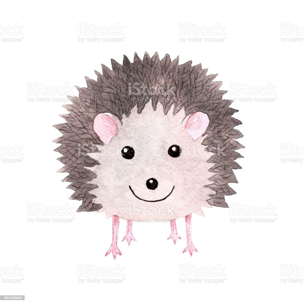 Cute smiling watercolor hedgehog royalty-free cute smiling watercolor hedgehog stock vector art & more images of animal
