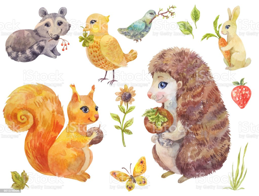 Cute Watercolor Forest Animals Vintage Illustration Of Fluffy Pets Royalty Free