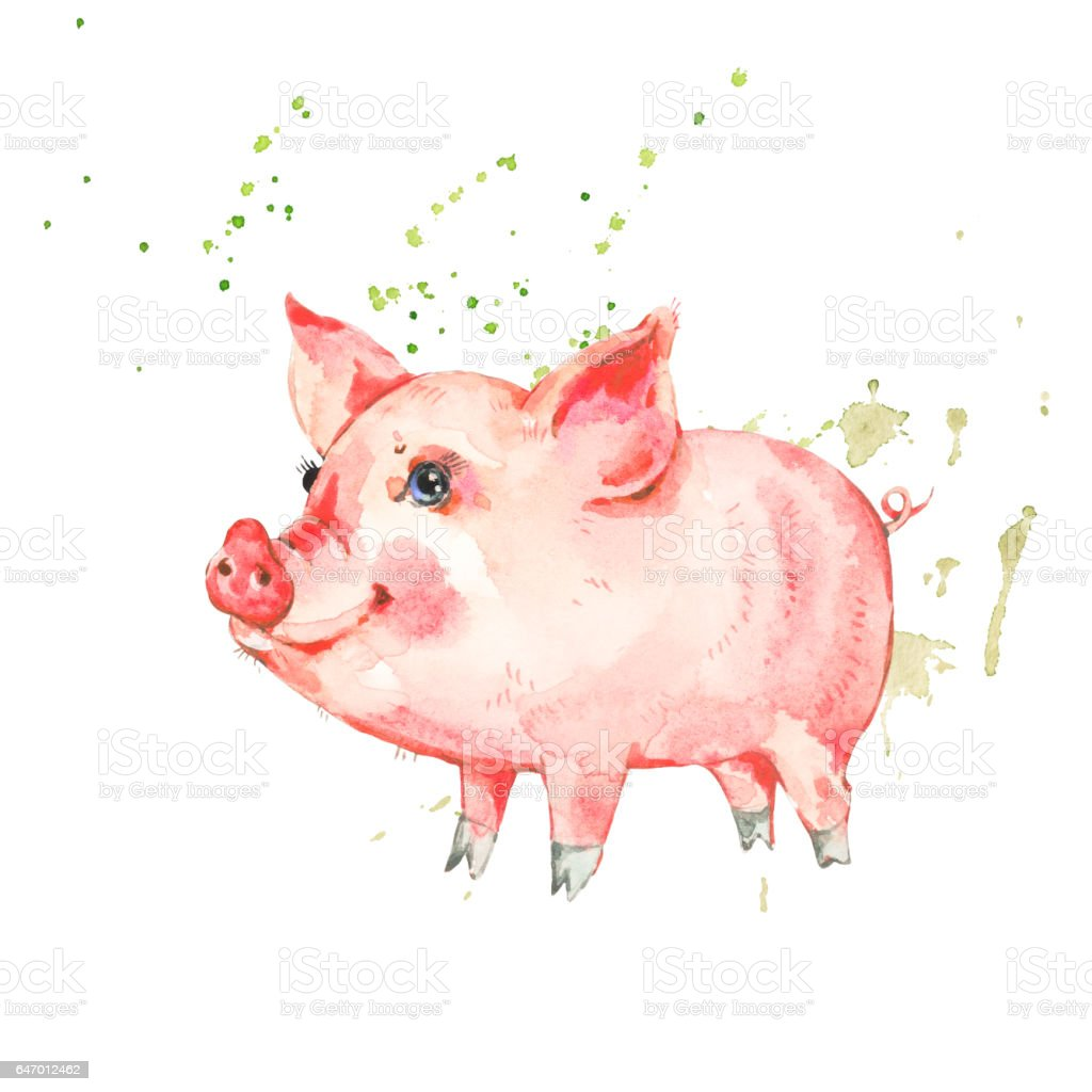 Cute watercolor piggy isolated on white background stock for Cute watercolor paintings