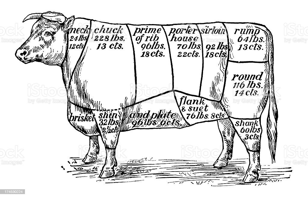 Cuts of Beef (Isolated on White) royalty-free stock vector art