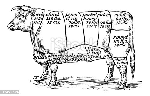 Antique XIX century engraving showing different cuts of beef.